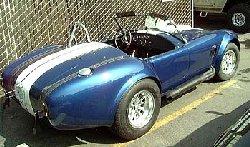 Cobra-02.jpg